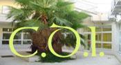 Site du CDI du Cours Maintenon